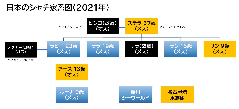 日本のシャチ家系図(2021年)